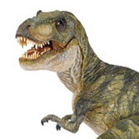 Toy Review: Papo Dinosaur Replicas
